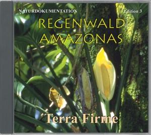 Regenwald Amazonas 3 - Terra Firme