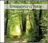 Entspannung Natur - Im grünen Wald