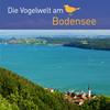 Vergrößerte Darstellung Cover: Die Vogelwelt am Bodensee. Externe Website (neues Fenster)