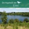 Die Vogelwelt der Eifel