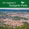 Die Vogelwelt in Stuttgarter Parks
