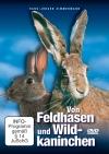 Von Feldhasen und Wildkaninchen