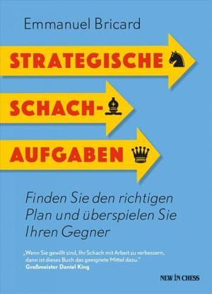 Strategische Schachaufgaben