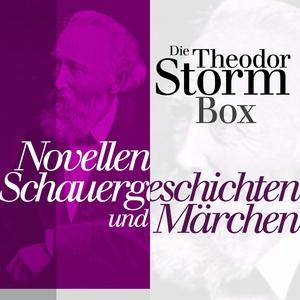 Die Theodor Storm Box