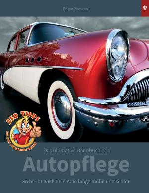 Das ultimative Handbuch der Autopflege