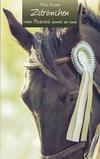 Wahre Pferdestärke kommt von innen