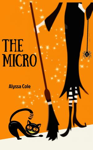 ¬The¬ Micro