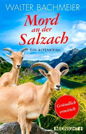 Mord an der Salzach - Gründlich ermittelt
