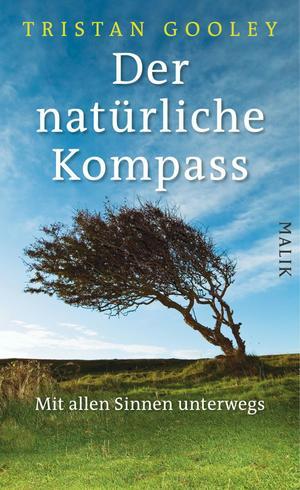 Der natürliche Kompass