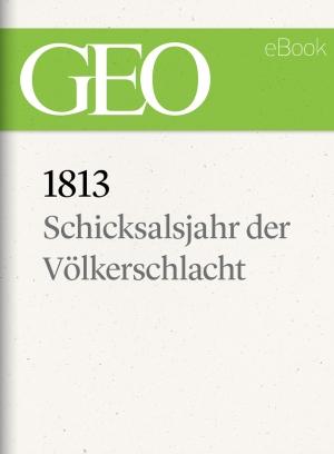 1813: Schicksalsjahr der Völkerschlacht