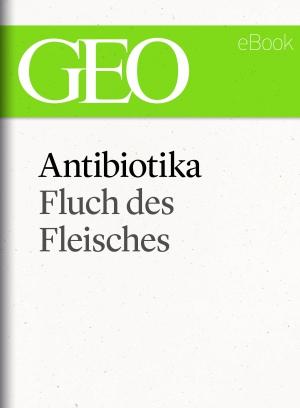 Antibiotika - Fluch des Fleisches