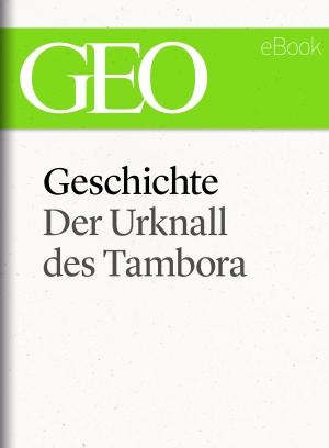 Geschichte - der Urknall des Tambora