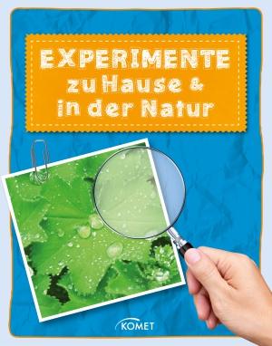 Experimente zu Hause und in der Natur
