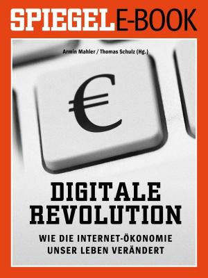 Digitale Revolution - Wie die Internet-Ökononmie unser Leben verändert