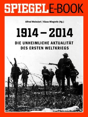1914 - 2014 - Die unheimliche Aktualität des Ersten Weltkriegs