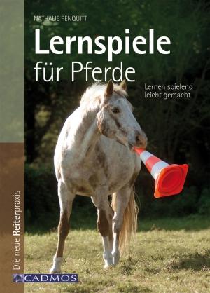 Lernspiele für Pferde
