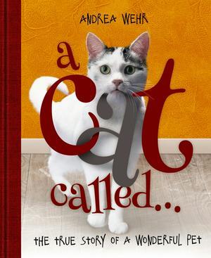 A Cat Called ...