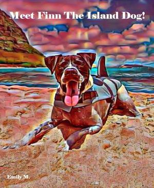 Tex & Friends: Meet Finn The Island Dog!