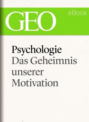 Psychologie - Das Geheimnis unserer Motivation