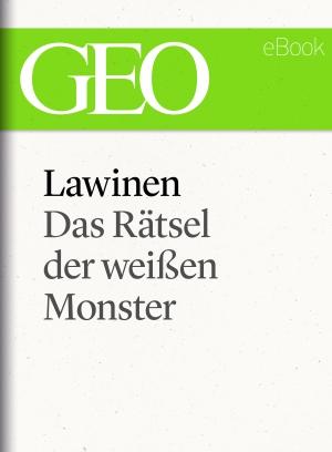 Lawinen - Das Rätsel der weißen Monster