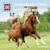 Wunderbare Pferde ; Reitervolk der Mongolen