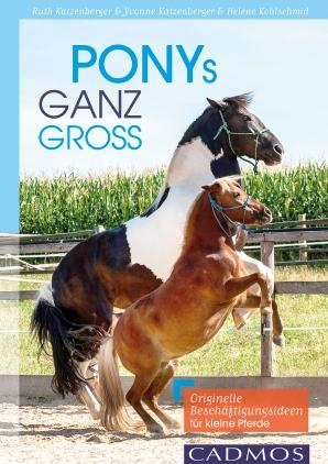 Ponys ganz groß
