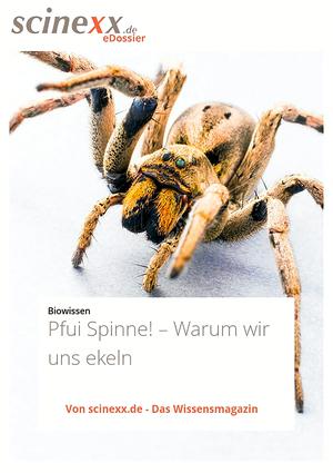 Pfui Spinne!