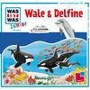 Was ist was Junior Hörspiel: Wale & Delfine