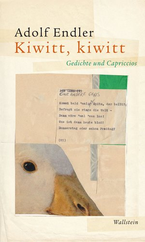 Kiwitt, kiwitt