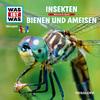 WAS IST WAS Hörspiel: Insekten/ Bienen & Ameisen