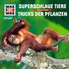 Vergrößerte Darstellung Cover: WAS IST WAS Hörspiel: Superschlaue Tiere / Tricks der Pflanzen. Externe Website (neues Fenster)