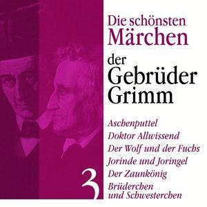 Aschenputtel: Die schönsten Märchen der Gebrüder Grimm 3