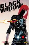 Black Widow 1 - Krieg gegen S.H.I.E.L.D.