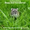 Stopp dein Hamsterrad