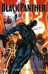 Black Panther 2 -Sturm über Wakanda