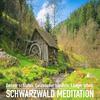 DIE SCHWARZWALD MEDITATION