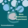 Das Meditations-Experiment