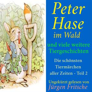 Peter Hase im Wald - und viele weitere Tiergeschichten