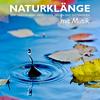 Naturklänge mit Musik - zum Einschlafen, Meditieren, Heilen und Entspannen