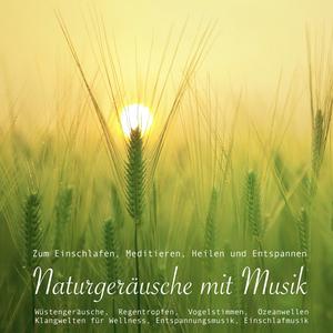 Naturgeräusche mit Musik zum Meditieren, Heilen und Relaxen (Entspannungsmusik)