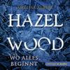 Vergrößerte Darstellung Cover: Hazel Wood. Wo alles begann. Externe Website (neues Fenster)