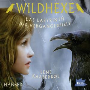 Wildhexe. Das Labyrinth der Vergangenheit