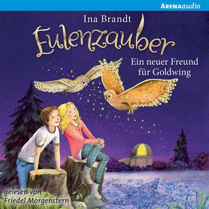 Eulenzauber (8). Ein neuer Freund für Goldwing