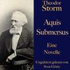 Theodor Storm: Aquis submersus