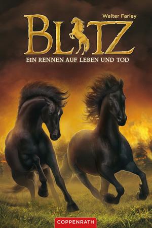Blitz (Band 4)
