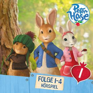 Peter Hase 1
