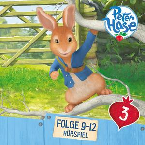 Peter Hase 3
