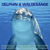 Delphin & Walgesänge: Stimmen und Rufe mit Meeresrauschen und traumhafter Entspannungsmusik