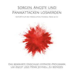 Sorgen, Ängste und Panikattacken loswerden: Soforthilfe bei Herzklopfen, Phobien, Panik & Co.