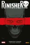 Vergrößerte Darstellung Cover: Punisher 1. Externe Website (neues Fenster)